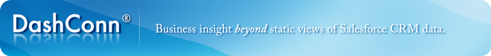 DashConn Business Insight Beyond Static Views of Salesforce CRM Data